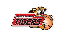 Melbourne Tigers logo